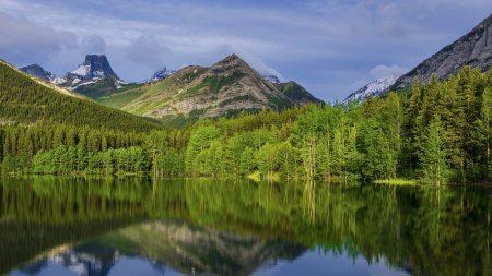 mountains, trees, grass