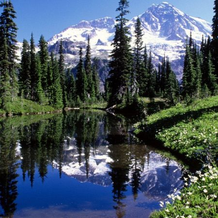 mountains, trees, lake