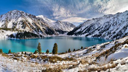 mountains, trees, snow
