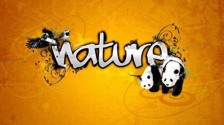 nature, panda, vector