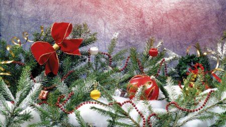 needles, snow, decoration