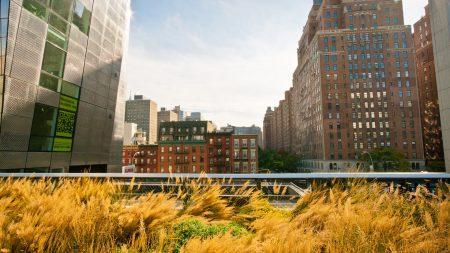 new york, buildings, streets