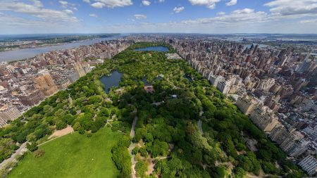 new york, central park, top view