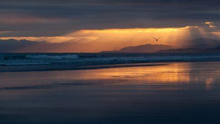 new zealand, coast, beach