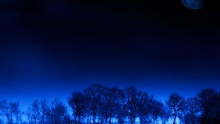night, moon, trees