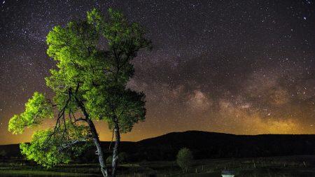 night, sky, stars