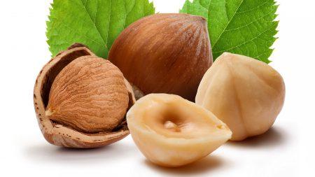 nuts, wood, macro