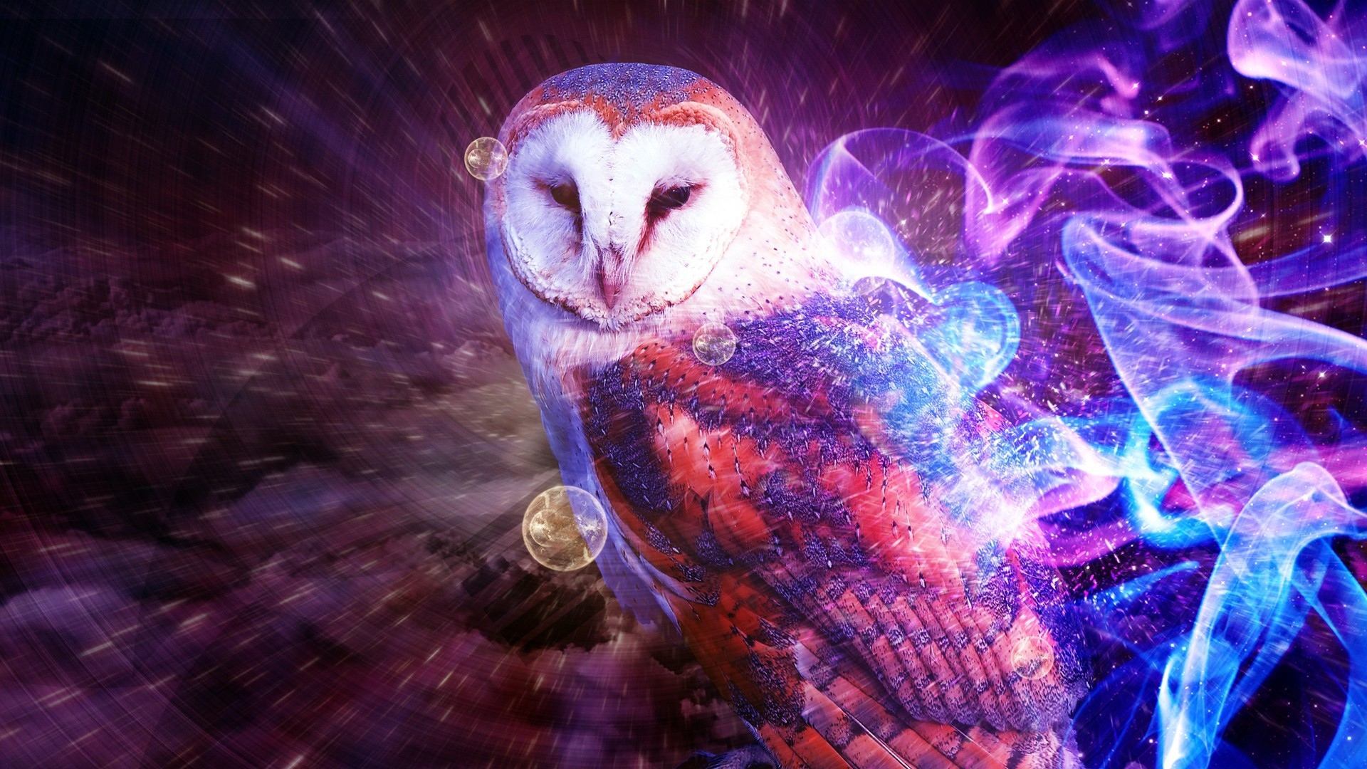 owl, smoke, fire