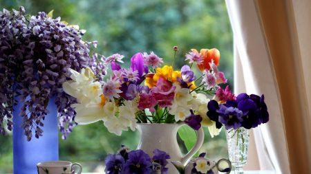 pansies, freesia, tulips