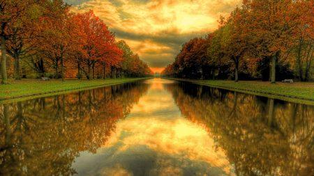 park, pond, trees