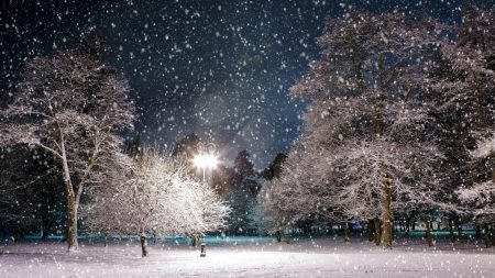 park, snow, winter