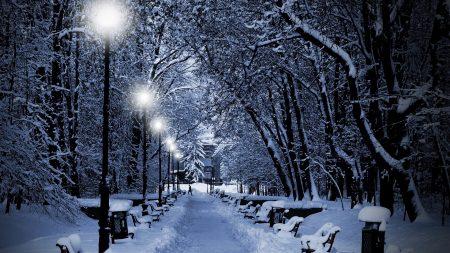 park, winter, twilight