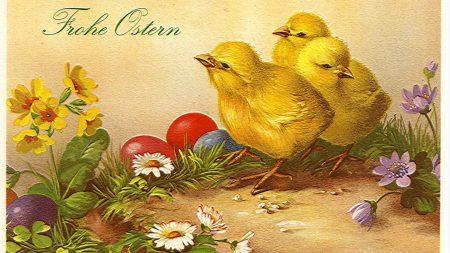 pascha, eggs, chicks