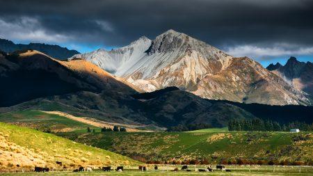 pasture, mountains, shadows