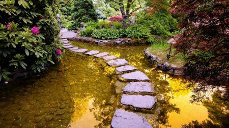 path, stones, water