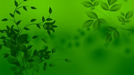 patterns, leaves, light