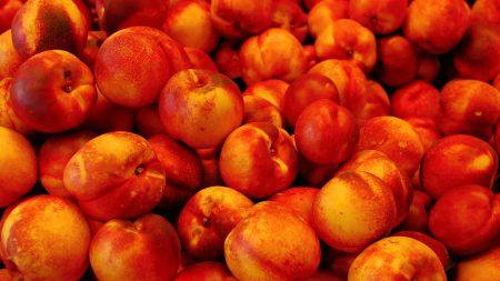 peaches, ripe, fruit