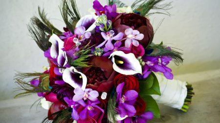 peonies, calla lilies, flowers
