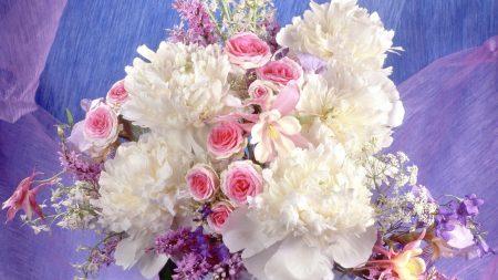 peonies, roses, flowers