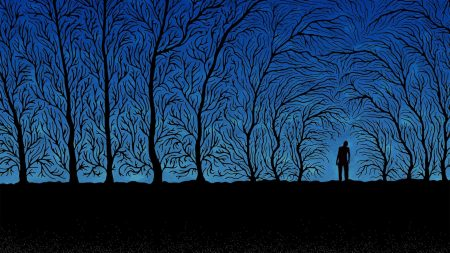 person, trees, branches
