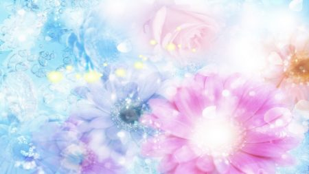 pink, blue, flowers
