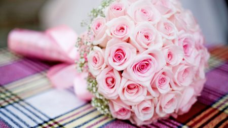 pink, bouquet, roses
