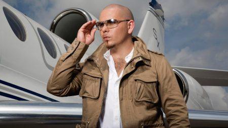 pitbull, airplane, jacket