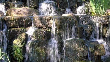 plates, stream, water