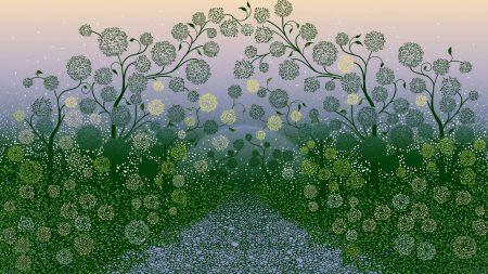 point, plant, imagination
