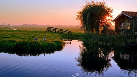 pond, house, sunset