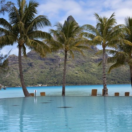 pool, palm trees, mountain