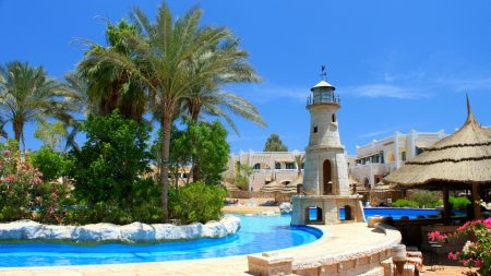 pool, recreation, trees