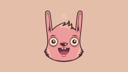 rabbit, face, figure