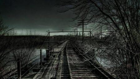 rails, railway, bushes