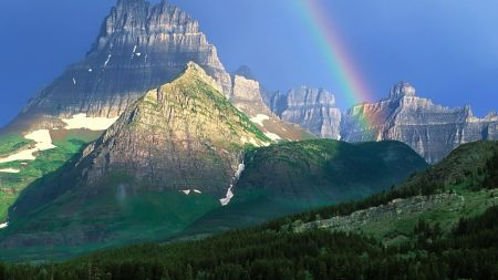 rainbow, mountains, wood