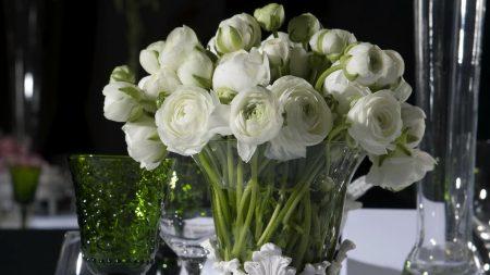 ranunkulyus, vase, bouquet