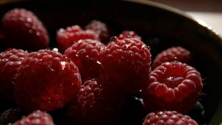 raspberry, berry, bowl
