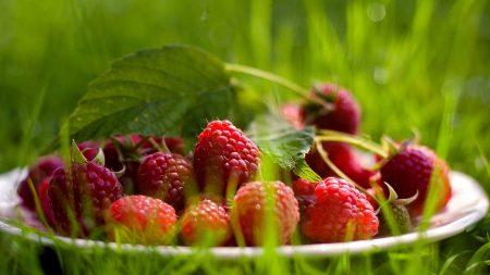 raspberry, berry, grass