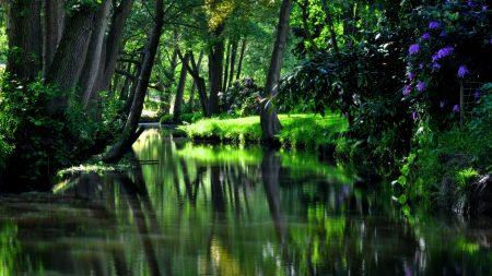 reservoir, river, garden
