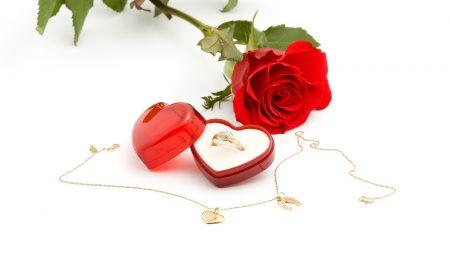 ring, box, rose