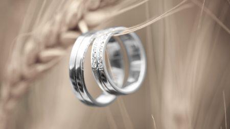 ring, platinum, pair