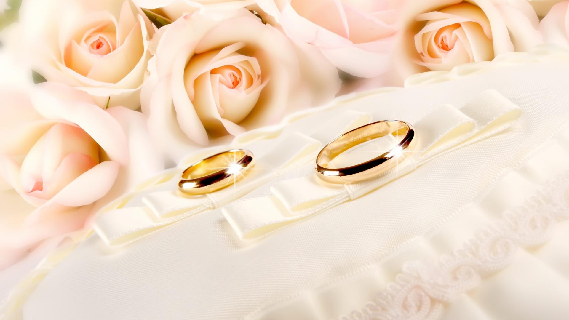 Download Wallpaper 1920x1080 Rings Wedding Gold Glitter Fabric Flower Rose Full Hd 1080p Hd Background