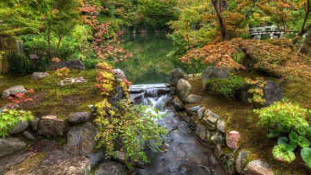 river, garden, pond