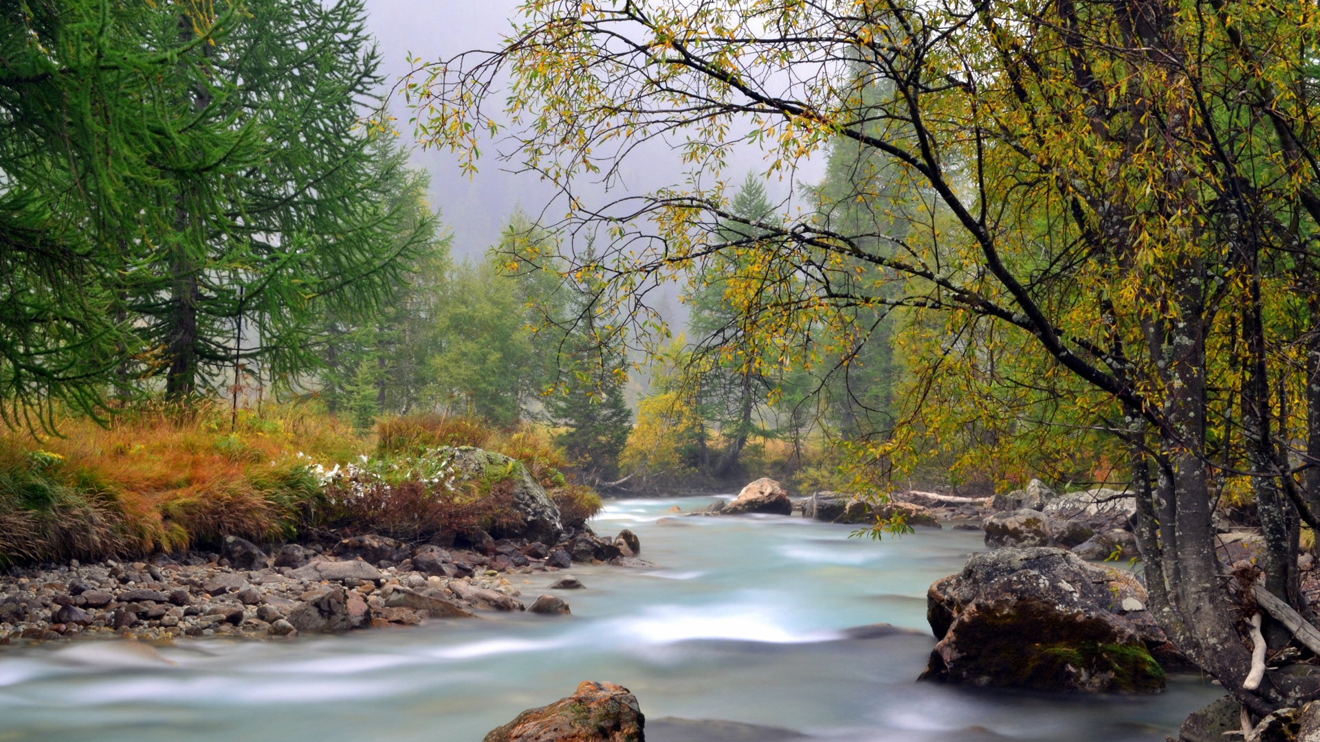Earnings Disclaimer >> Download Wallpaper 1920x1080 river, mountain, trees ...