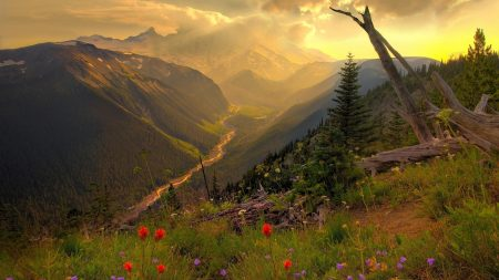 river, mountains, flowers