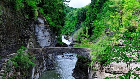 river, rocks, trees
