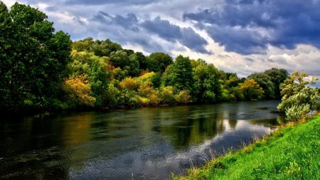 river, trees, herbs