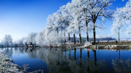 river, trees, hoarfrost