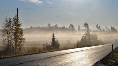 road, asphalt, fog