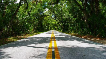 road, asphalt, lines